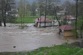 Zajecar poplava