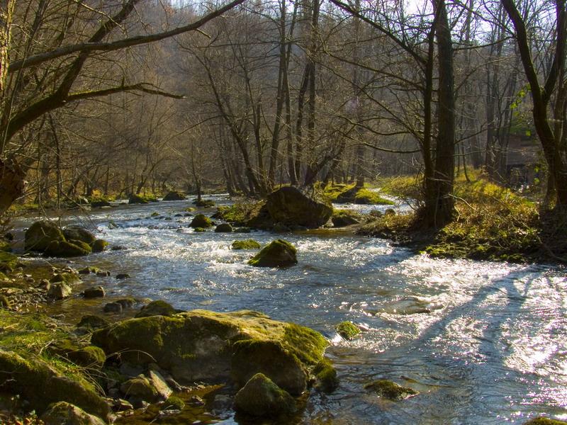 Gradac_river_near_Valjevo