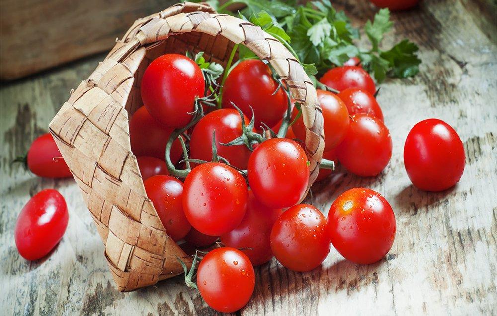 Organska semena – kako se proizvode i gde mogu da se nabave, radionica subota 29. septembar